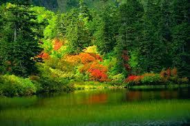 paisajes lindos