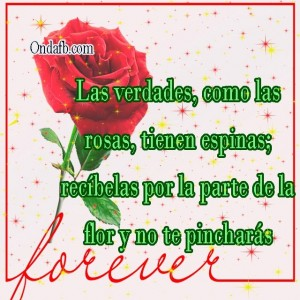 rosas-ondafb