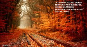 autumn_railway-wallpaper-1366x768 - Copy