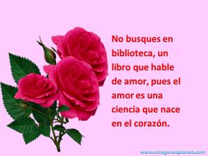 imagenes de amor con rosas y frases para facebook