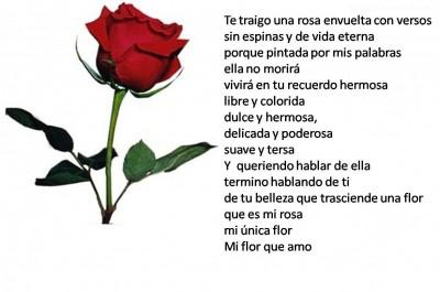 rosas-con-poemas-10184
