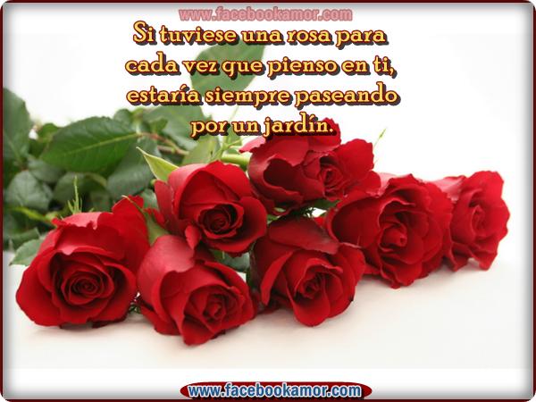 Rosas Rojas Con Frases De Amor: Imàgenes De Amor Con Flores Y Frases Romànticas