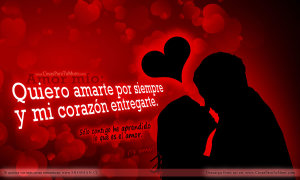 amarte_por_siempre-other