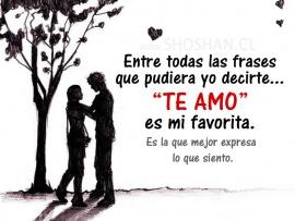 la_frase_te_amo-t2