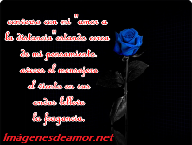 Tarjetas+ de+ rosas+ con+ frases+ de +amor+ a+ distancia+ para+ facebook