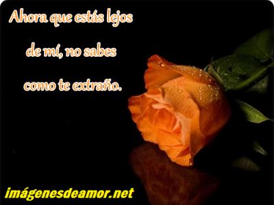 Tarjetas+ de+ rosas+ con+ frases+ tristes+ para+ facebook