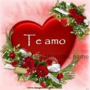 imagenes_de_amor_corazon_te_amo