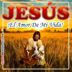 Jesus amor de mi vida 1513.jpg.opt350x350o0,0s350x350