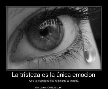 1381369875-carteles-ojos-llorando-desmotivaciones