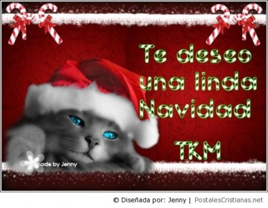 Navidad_Jesus_47