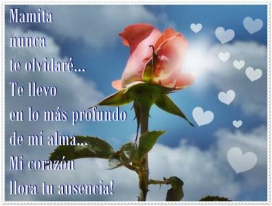 rosa-cielo2