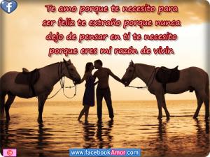 Imagenes-romanticas-con-caballos-5