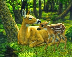 cuadros-de-animales-en-paisajes-realistas