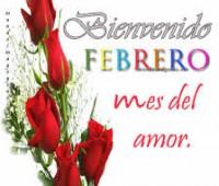 Imágenes de rosas con frases bienvenido febrero