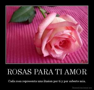 desmotivaciones.mx_ROSAS-PARA-TI-AMOR-Cada-rosa-representa-una-ilusion-por-ti-y-por-saberte-mia_134582625095