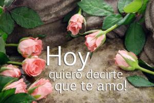 mensajes-hoy-quiero-decirte-que-te-amo