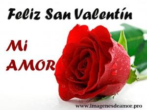 rosio-rosa2