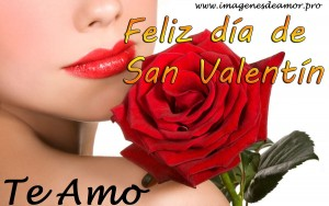 san-valentin-rosa