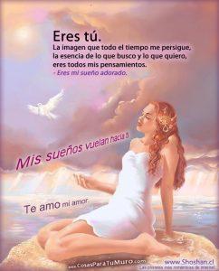 eres_tu_mi_amor-other