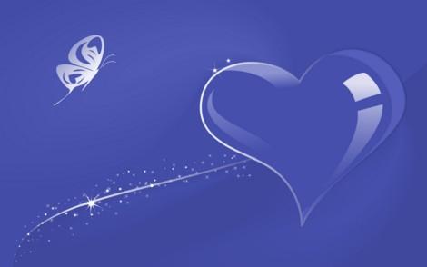 amor-13_min