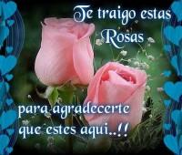 Imágenes de amor con con un ramo de rosas