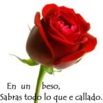 rosa-hd1-247x300-150x150