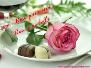 una rosa para otra rosa mas bella