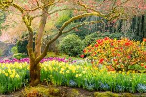 50_paisajes_donde_siempre_deberia_ser_primavera_361723358_1200x800