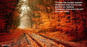 autumn_railway-wallpaper-1366x768 - Copy