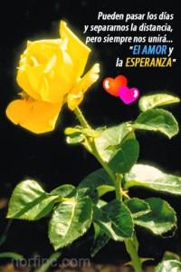 imagenes-de-amor (6)