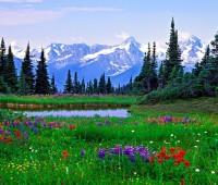Lindos paisajes de primavera para descargar