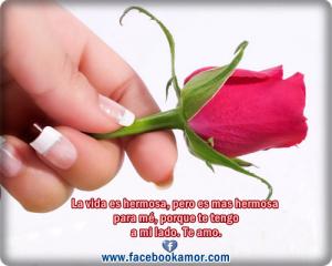 postales-de-rosas-para-el-amor
