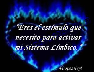 psicopsi-piropos-sistema-limbico