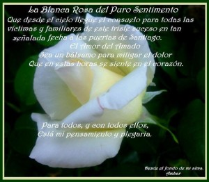 rosas blancas con frase