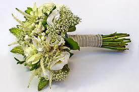 rosas blancas para ti