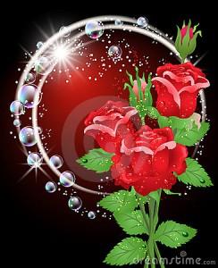 rosas-y-estrellas-19398397
