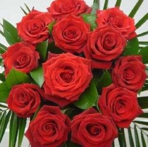 rosas_rojas_las_flores_mas_romanticas-25205