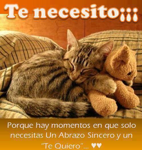 te-necesito
