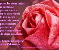 Imágenes de rosas con versos de amor para compartir en facebook
