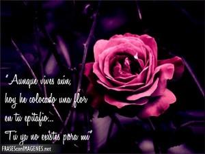 rosa-en-la-oscuridad