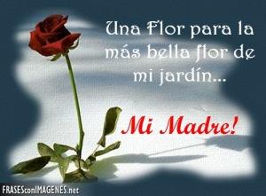 una-flor-para-mi-madre