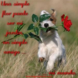 Imagenes-de-amor-entre-amigos9