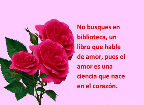 Imágenes de rosas rojas con lindas frases de amor