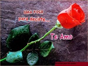 postales-bonitas-con-rosas-para-amor