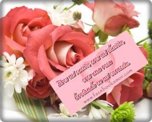 postales-romanticas-para-dedicar-amor-con-flores