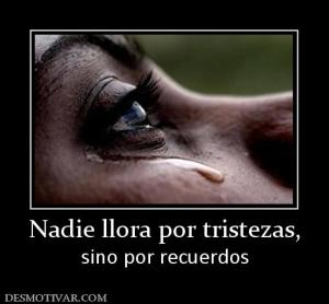 135734_nadie-llora-por-tristezas