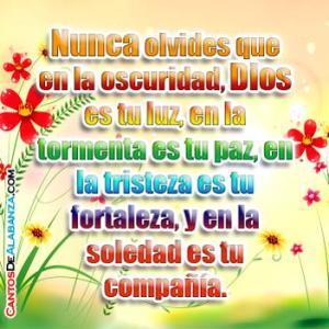 Dios es mi paz 41113.jpg.opt351x351o0,0s351x351