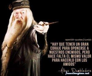 Frases Albus Dumbledore 11