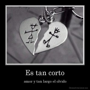 desmotivaciones.mx_Es-tan-corto-amor-y-tan-largo-el-olvido_132638020399-e1362189220839