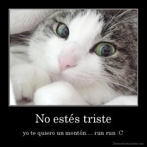 desmotivaciones.mx_No-ests-triste-yo-te-quiero-un-montn....-run-run-C_133840945160